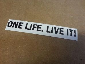 One Life Live It  Large Vinyl Decal Sticker Car Van CamperVan DUB VAG Land Rover